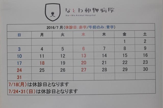 IMG_3999